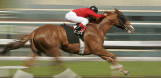 race för blurhäströrelse Arkivfoto