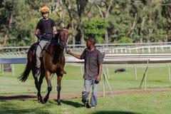 Race hästbrudgumjockeyen Arkivfoto