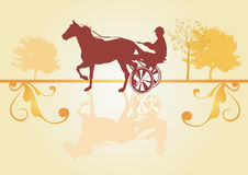 Race horse Royalty Free Stock Photography