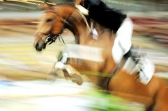 Race horse. View of a jumping race horse and his rider during a competition Royalty Free Stock Photography