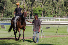 Race Horse Groom Jockey Stock Photo