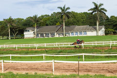 Race Horse Jockey Closeup Running Track Royalty Free Stock Photo