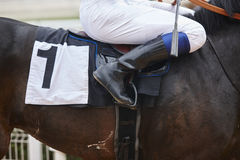 Race horse with jockey before the race. Effort background Stock Images
