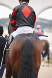 Race horse with jockey ready to run. Paddock area. Stock Images