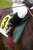 Race horse and jockey ready to run Stock Photos