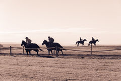 Race Horse Riders Running Training Track. Race horses riders running on countryside training track morning landscape Royalty Free Stock Images