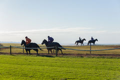 Race Horse Riders Running Training Track. Race horses riders running on countryside training track morning landscape Royalty Free Stock Photos