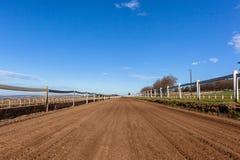 Race Horse Training Track Blue Sky Stock Image