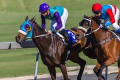 Race Horses Action. Race Horses jockeys running action closeup Royalty Free Stock Photos