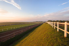 Race Horses Grass Sand Tracks Training Landscape Royalty Free Stock Photography