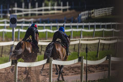 Race Horses Jockeys Training Stock Photography
