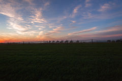 Race Horses Riders Landscape Stock Image