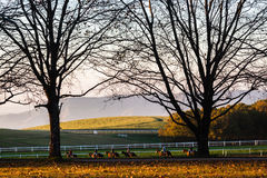 Race Horses Riders Landscape Royalty Free Stock Image