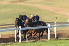 Race Horses Riders Training. Race Horses jockey riders morning training track landscape Stock Images