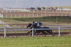 Race Horses Riders Training. Race Horses jockey riders morning training track landscape Stock Photo