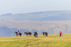 Race Horses Riders Training Landscape. Race Horses jockey riders morning training track landscape Royalty Free Stock Images