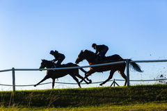 Race Horses Running Blue. Race horses jockeys training running track action morning silhouetted sky blue landscape Stock Photo