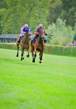 Race horses Royalty Free Stock Photography
