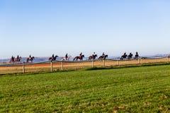 Race Horses Track Training Landscape. Race horses riders training track morning landscape Royalty Free Stock Photos