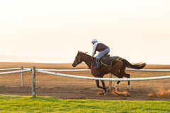 Race Horses Training Dawn Royalty Free Stock Images