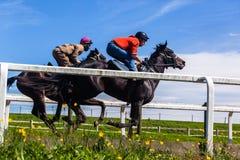 Race Horses Training Landscape. Race horses jockeys training runs morning blue sky track landscape Royalty Free Stock Image
