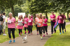 Race for Life sponsored fun run. Liverpool, UK - June 26, 2016: Race for Life sponsored fun run for British charity Cancer Research UK. The race is on, Groups royalty free stock image