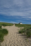 Race Point Cape Cod. Path to the ocean Stock Photography