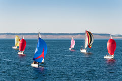 Race of sailboats at Port Townsend