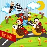 Race snails Royalty Free Stock Photos