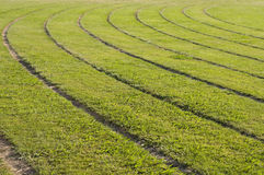 Race track Royalty Free Stock Images
