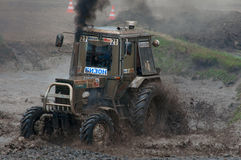 Race of tractors in the mud Stock Image