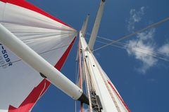 Race yacht spinnaker stock photo