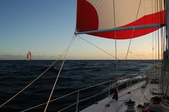 Race yacht spinnaker royalty free stock photos