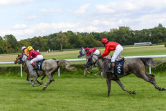 Race for 3-year-old Arabian horse group II on 5 September 2015 in Wroclaw, Poland. Stock Photography