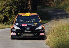 Raceauto Peugeot 207 Royalty-vrije Stock Foto's