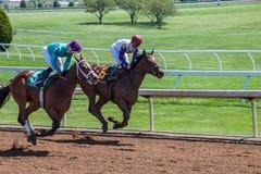 Racecourse - Keeneland Stock Image