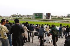 racecourse nakayana японии Стоковые Изображения RF