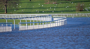 A racecourse track underwater Royalty Free Stock Photography