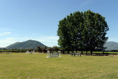Racecourse winery Viu Manent. Royalty Free Stock Photos