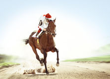 Racehorse coming first. The racehorse coming first on hippodrome track Royalty Free Stock Photos