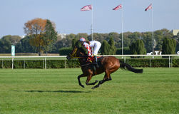 Racehorse. Jockey and racehorse in fast gallop Stock Photography
