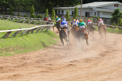 A racehorse and jockey in a horse race.  Royalty Free Stock Photos