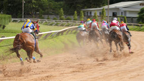 A racehorse and jockey in a horse race.  Stock Photos