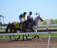 Racehorses and jockeys galloping. During races Stock Images