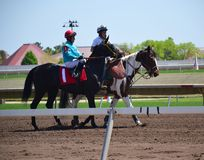 Racehorses and jockeys galloping. During races Stock Image