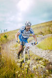 Racer bike coming down the mountain Stock Photography