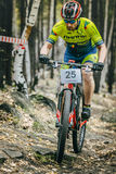 Racer cyclist uphill rides over rocks Royalty Free Stock Photography