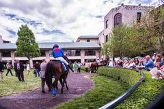Racerbana - Keeneland Arkivfoton