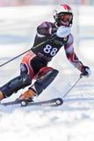 raceren skidar Arkivfoton