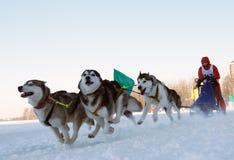 Races Royalty Free Stock Photo